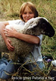 Girl with pet sheep.